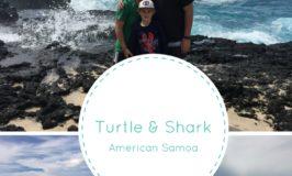 American Samoa's Turtle and Shark