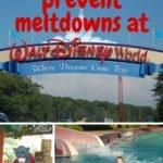 Stop Disney Meltdowns in Their Tracks!
