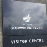 Waitomo Glowworm Caves–A New Zealand Must Do