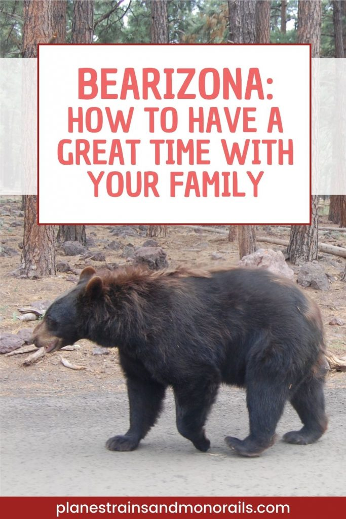 """title graphic showing a bear and the words """"Bearizona: How to have a great time with your family"""""""
