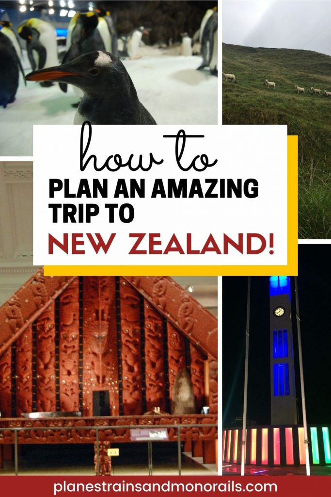 title graphic showing a variety of photos from New Zealand and the words how to plan an amazing trip to New Zealand